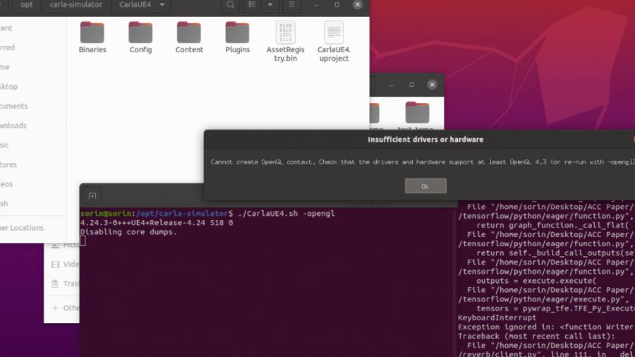 Der Start von CARLA in einer virtuellen Maschine (Ubuntu) ist nicht möglich